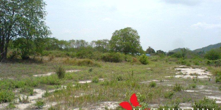 Land View5