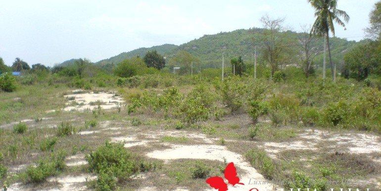 Land View6